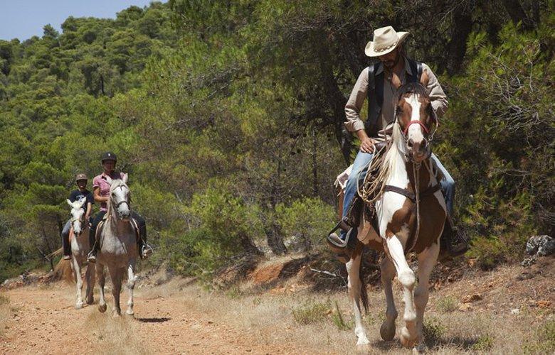Ranch6