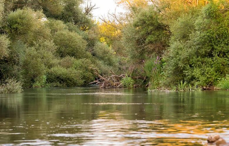 Αλφειός, ο πλατύρροος ποταμός της Πελοποννήσου