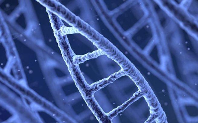 Κάθε χρόνο παράγονται γονιδιωματικά δεδομένα που γεμίζουν… 40 δισεκατομμύρια CD