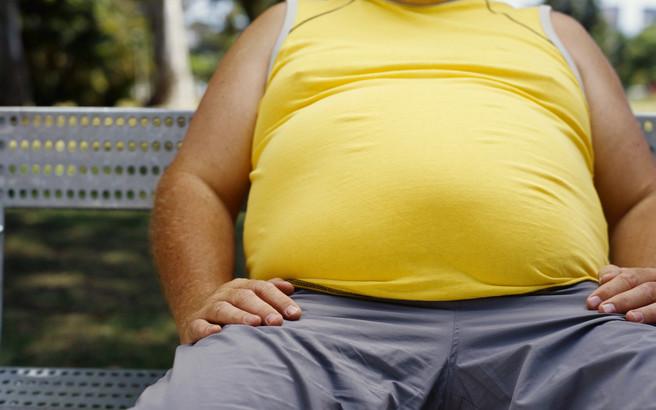 obesity epidemic.medium
