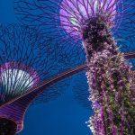 Ο φουτουριστικός πράσινος κήπος της Σιγκαπούρης