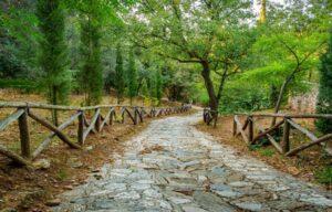 Πέντε μέρη της Αττικής ιδανικά για χαλαρή βόλτα στη φύση – News.gr