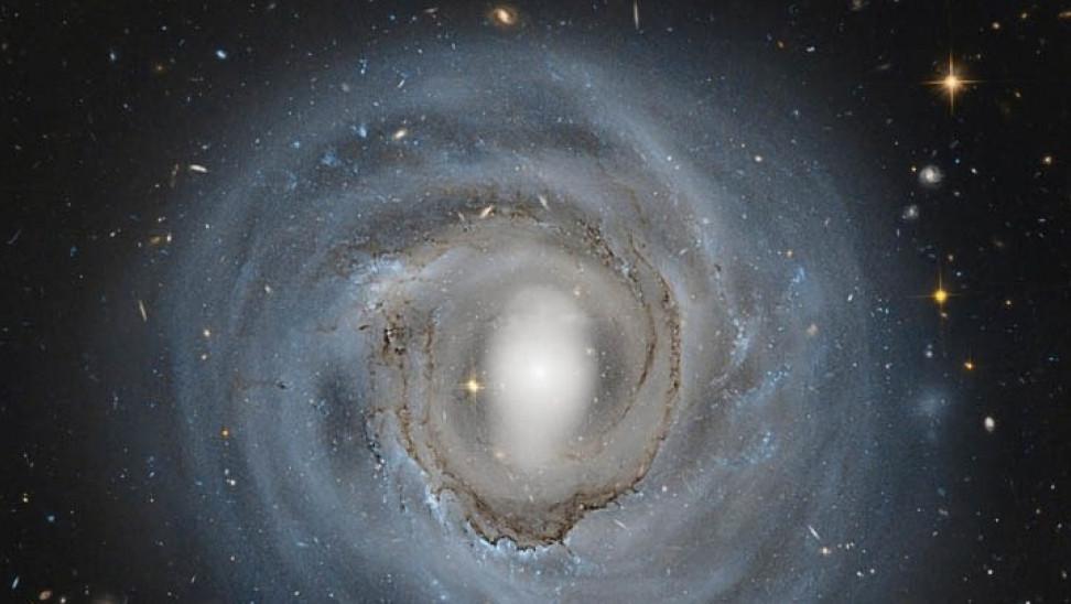 galaxias ape