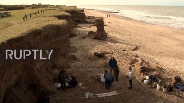 Αργεντινή: Βρέθηκε τυχαία απολίθωμα θηλαστικού εξαφανισμένου εδώ και 10.000 χρόνια